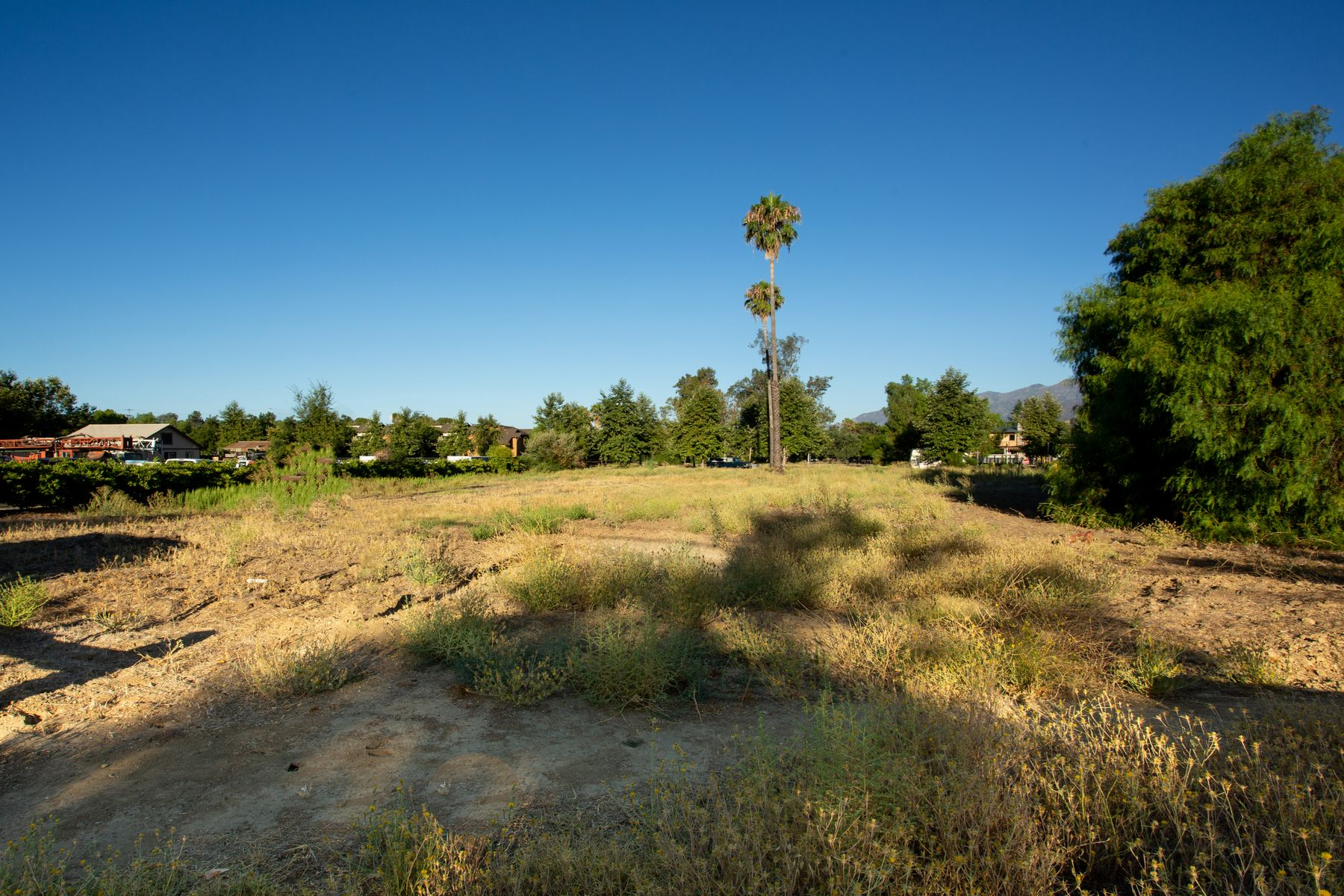 Terreno por un Venta en 1.4 acres Prime Development Site 323 Bryant Street Ojai, California 93023 Estados Unidos