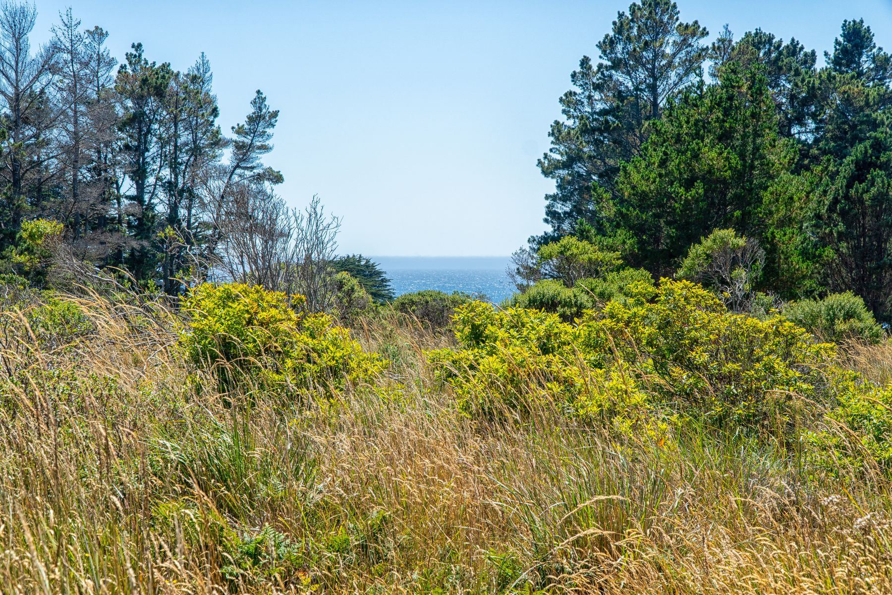 Land for Sale at 116 Galleons Reach The Sea Ranch, California 95497 United States