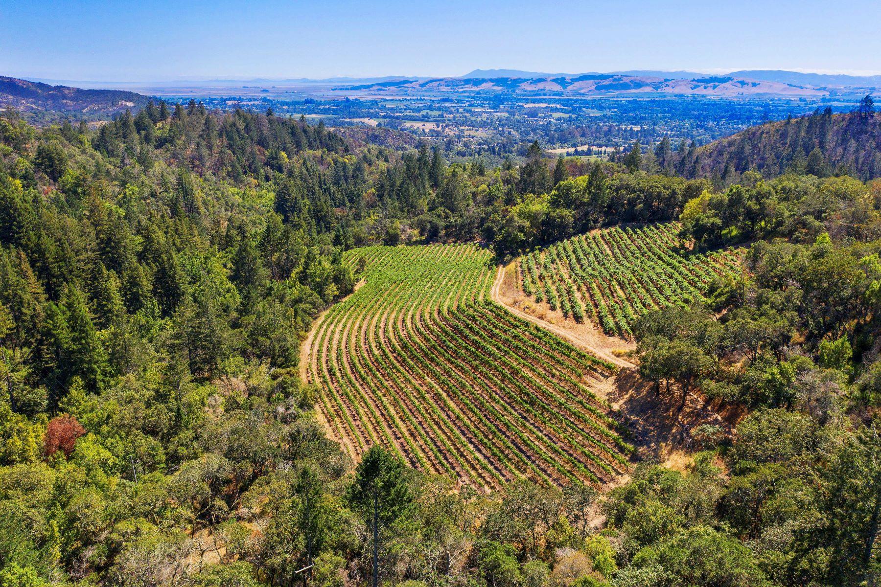 Terreno por un Venta en Wine Country Serenity 2500 Castle Rd Sonoma, California 95476 Estados Unidos