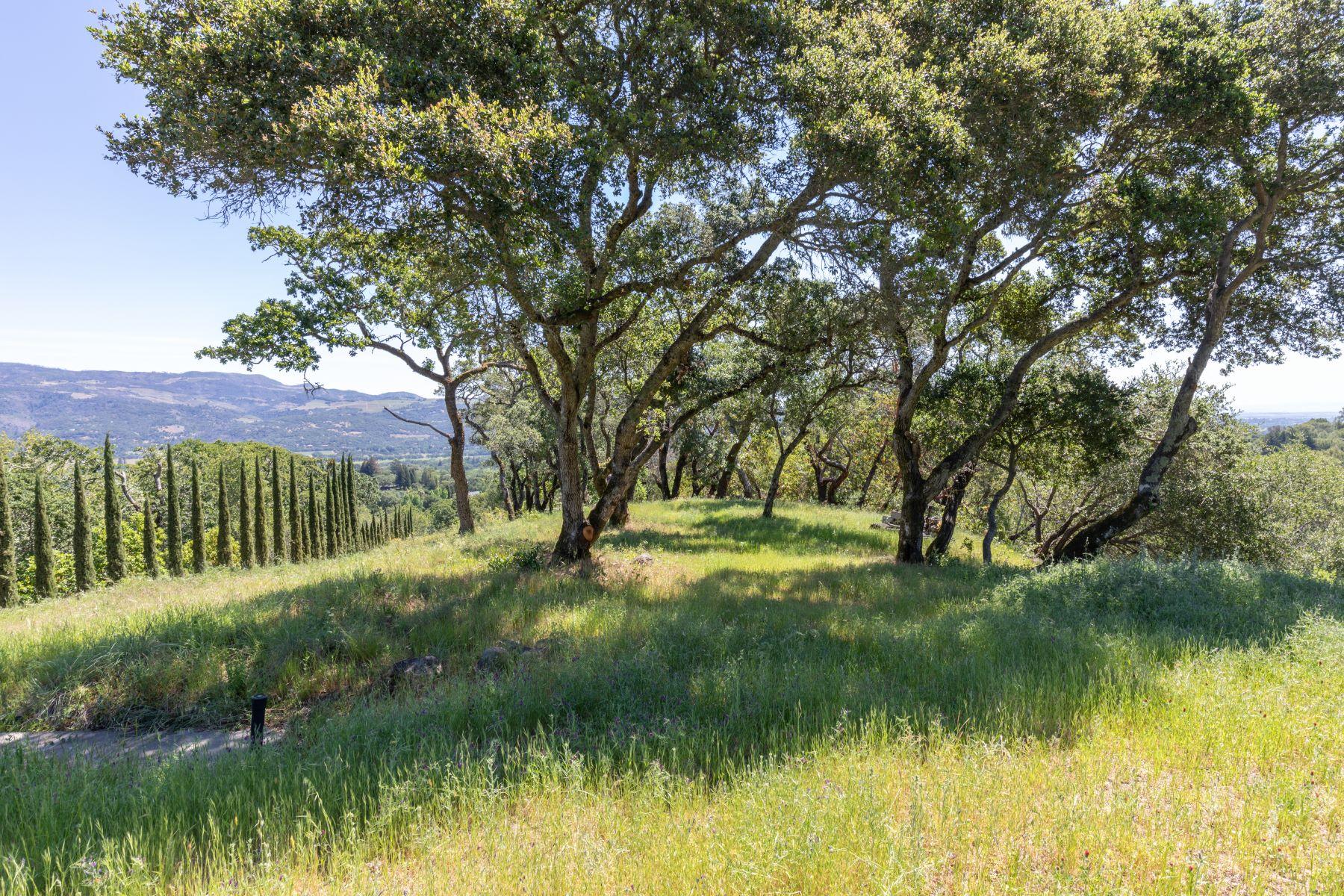 土地,用地 为 销售 在 20 +/- Acres on Sobre Vista 0 High Grove 索诺玛, 加利福尼亚州 95476 美国