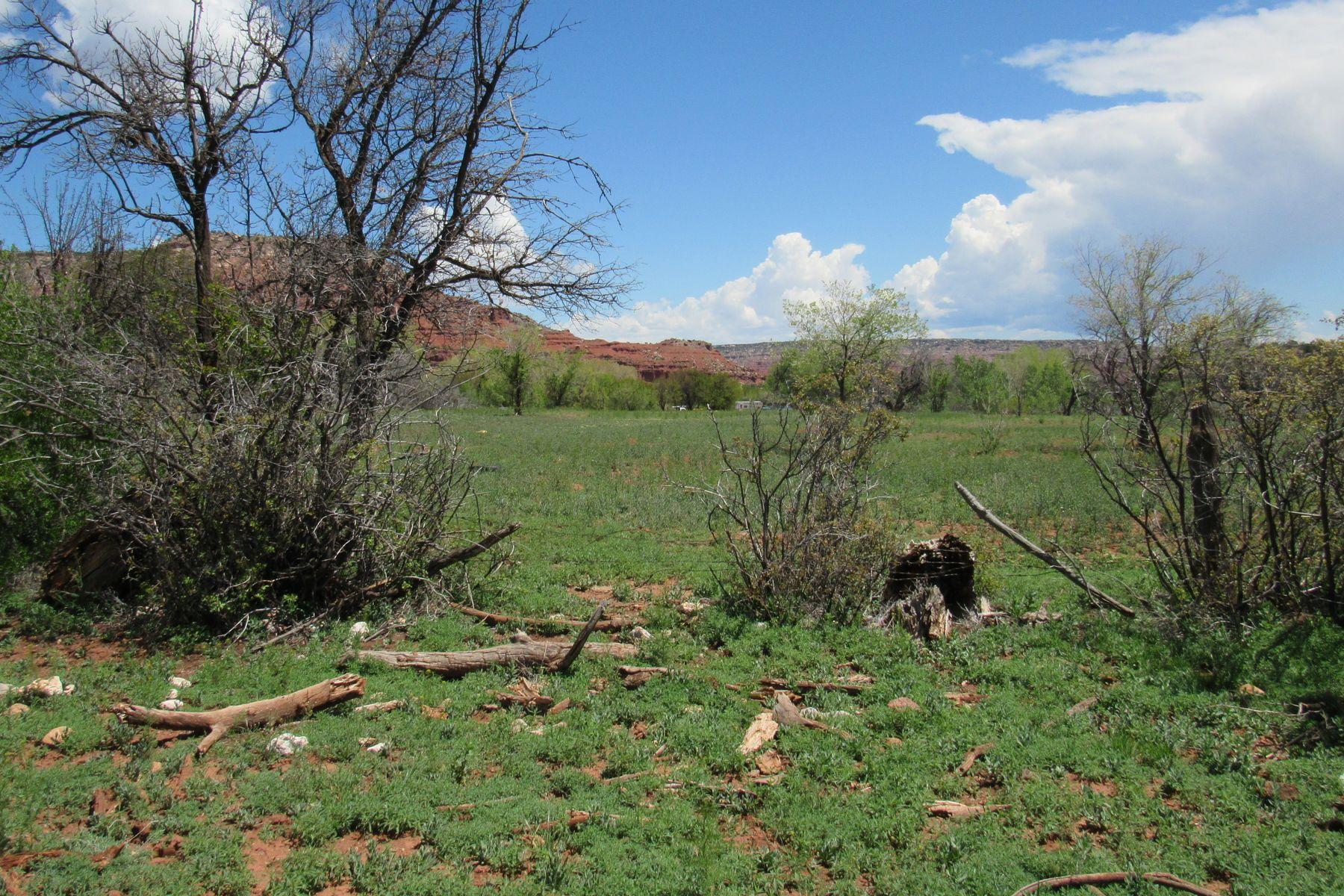 أراضي للـ Sale في Coyote, New Mexico 87012 United States