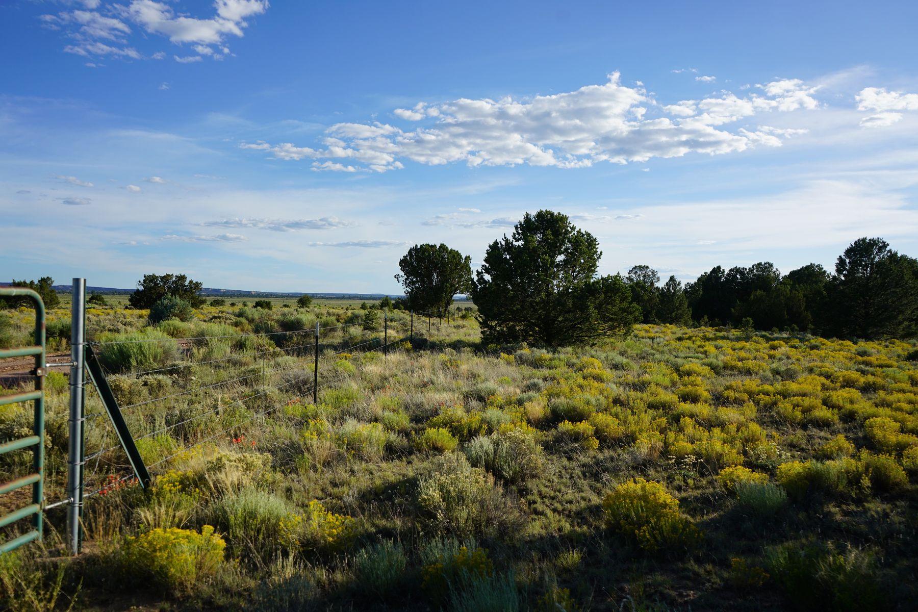 Terrain pour l Vente à Ramah, Nouveau-Mexique 87321 États-Unis