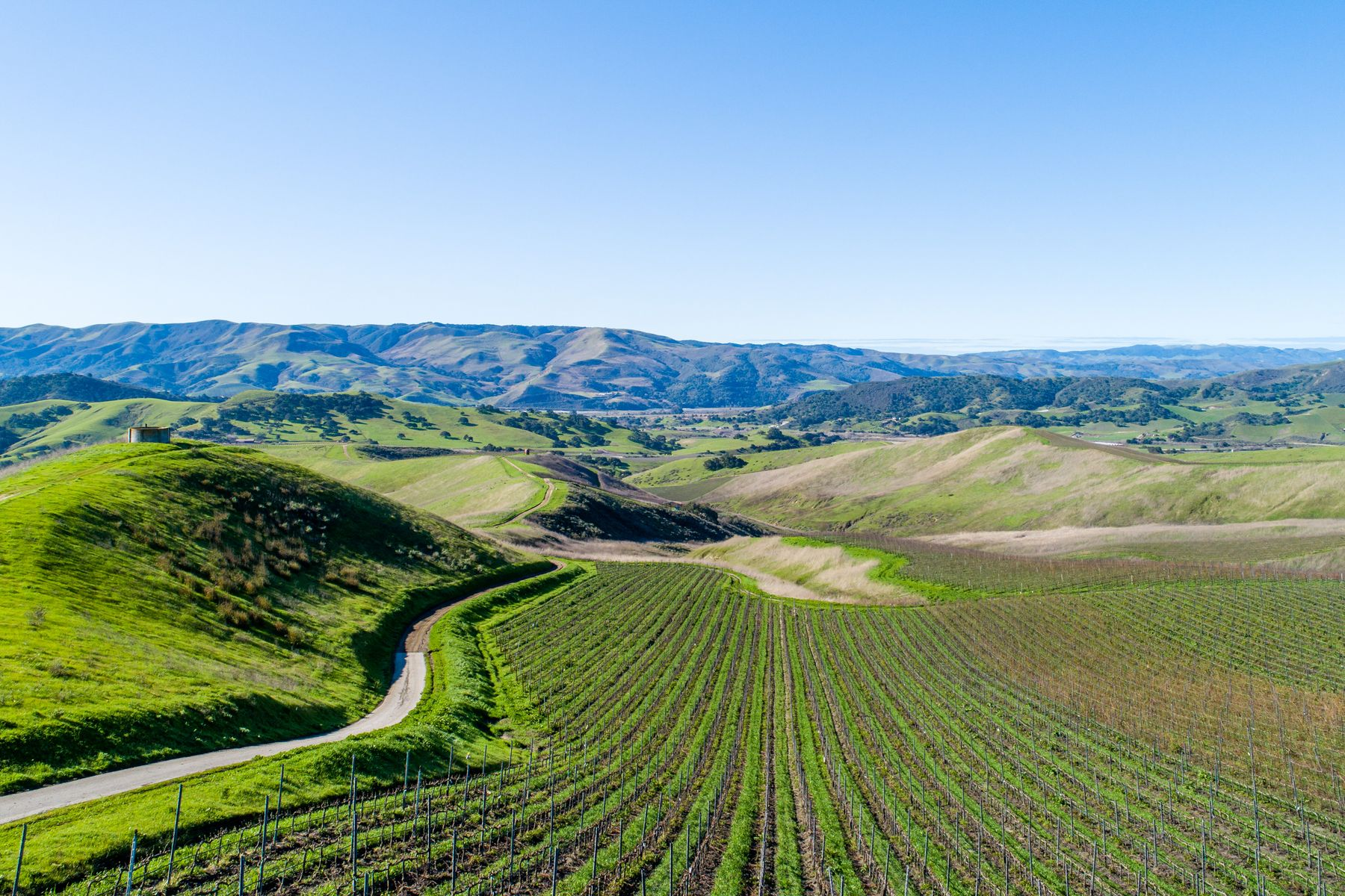 Vineyard Real Estate por un Venta en 1000+/- Acres In The Santa Rita Hills 7631 East Hwy 246 Lompoc, California 93436 Estados Unidos