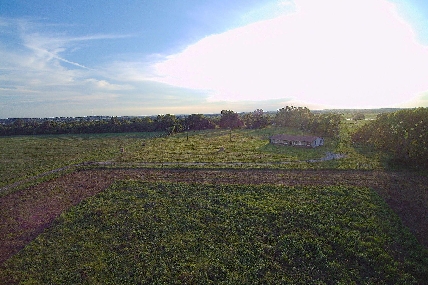 农场 / 牧场 / 种植园 为 销售 在 9026 County Road 309 Navasota, 得克萨斯州 77868 美国