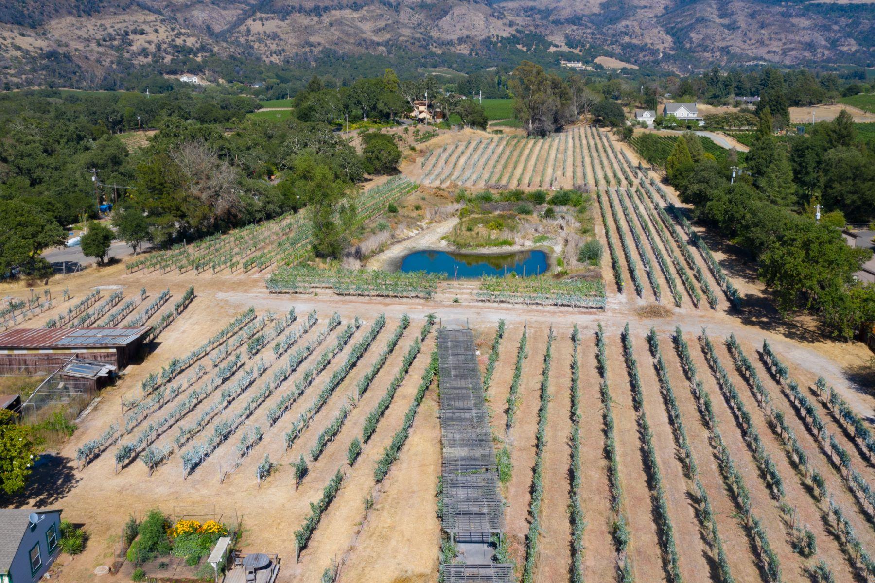 Single Family Homes 为 销售 在 Rare East Side Napa Offering 3162 Vichy Ave 纳帕, 加利福尼亚州 94558 美国