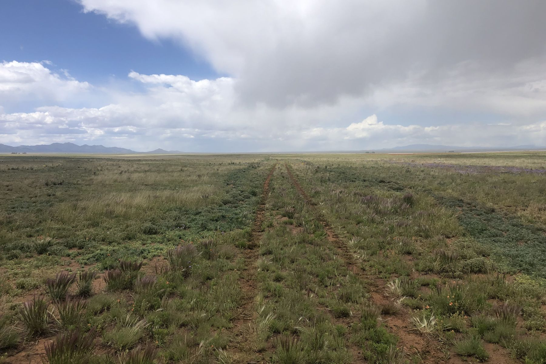 Farm / Ranch / Plantation للـ Sale في 33, 40, 50 & 51 Persia Ct., Stanley, New Mexico 87056 United States