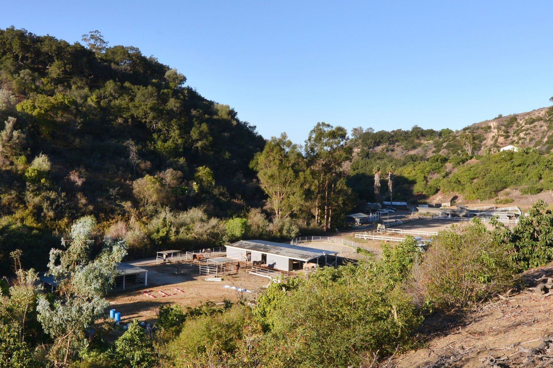 Terreno por un Venta en 15.95± Acres with Barns & Avocados 841-861 East Alamar Avenue Santa Barbara, California 93105 Estados Unidos