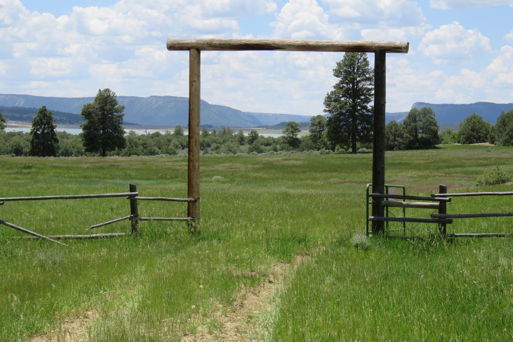 أراضي للـ Sale في Los Ojos, New Mexico 87551 United States