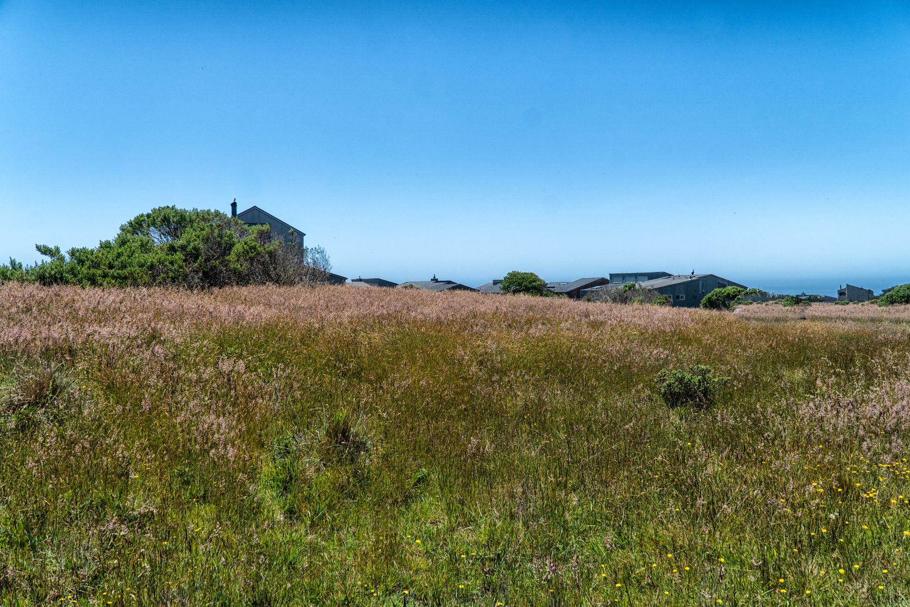Land for Sale at 41919 Leeward Rd The Sea Ranch, California 95497 United States