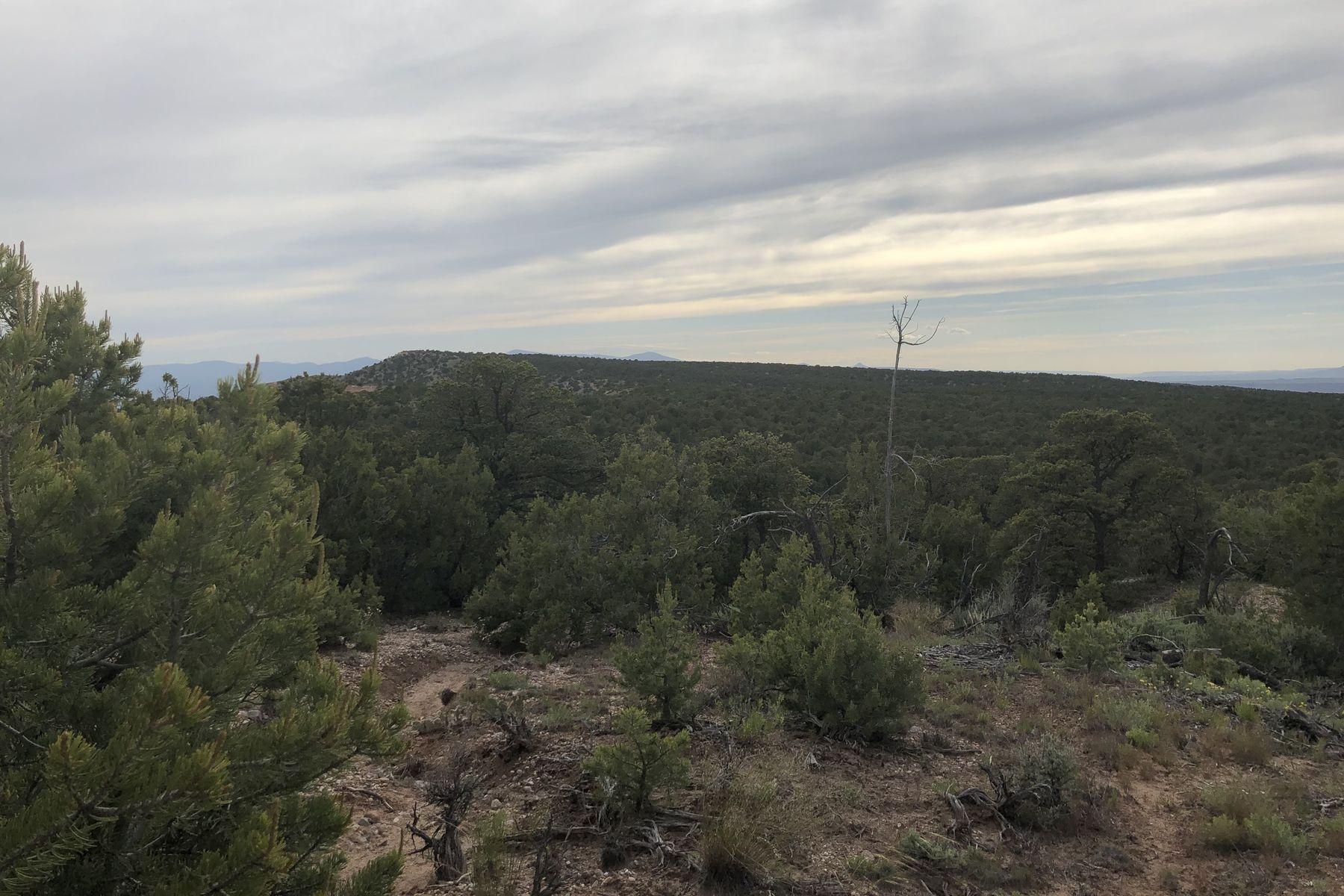 Terreno per Vendita alle ore Truchas, Nuovo Messico 87578 Stati Uniti