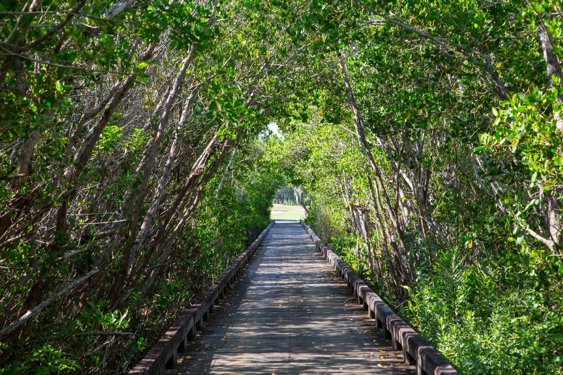 Additional photo for property listing at 400 Hammock Shore Drive Melbourne Beach, Florida 32951 United States