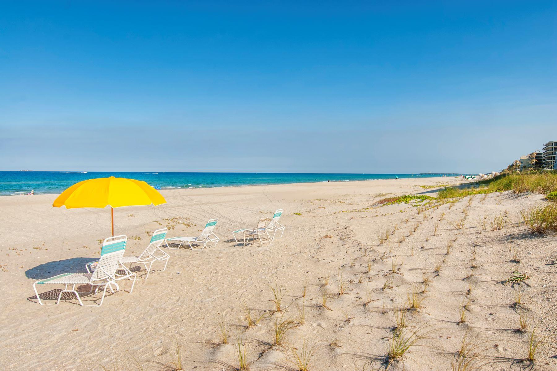 2560 S Ocean Boulevard 2560 S Ocean Boulevard 612 Palm Beach, Florida 33480 Amerika Birleşik Devletleri