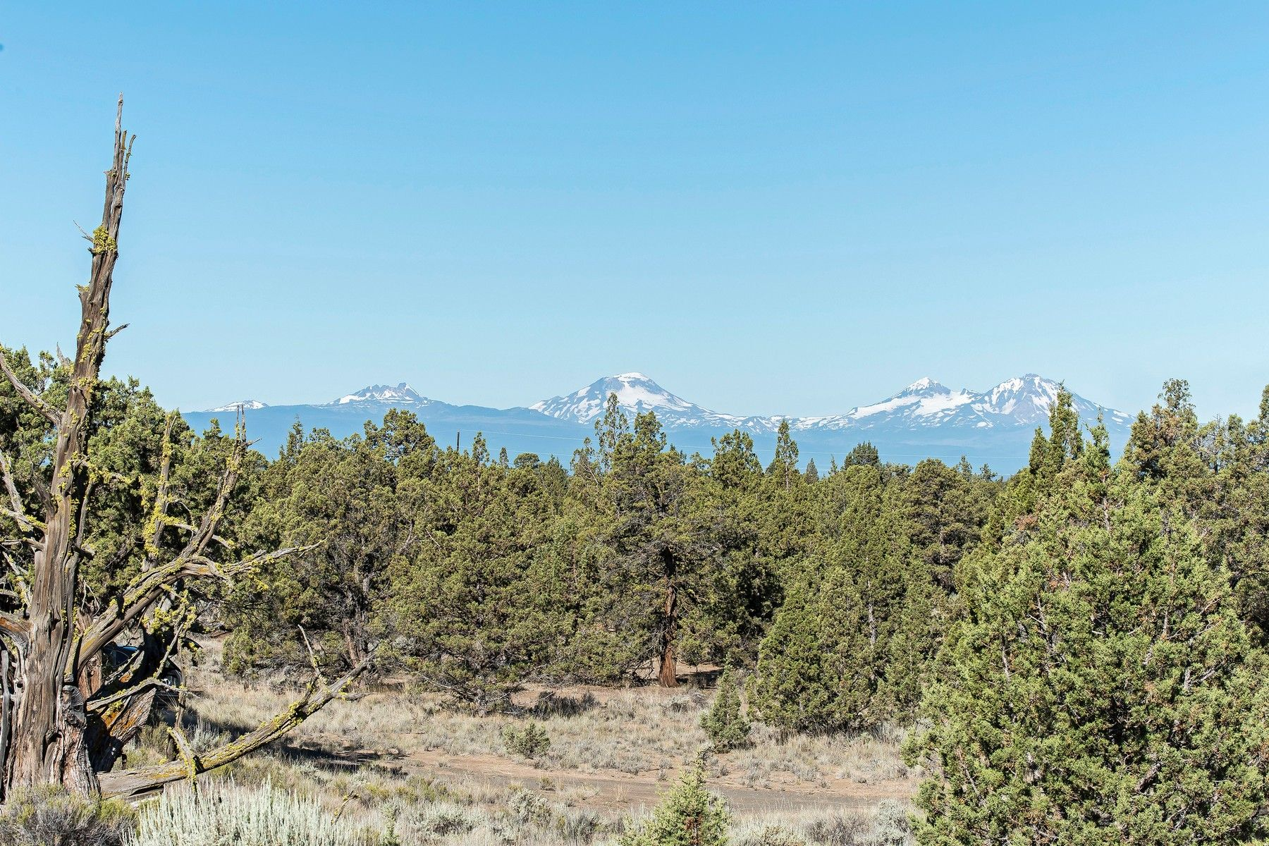 Οικόπεδο για την Πώληση στο 17162 SW Mt McKinley Way Powell Butte, OR 97753 Powell Butte, Ορεγκον 97753 Ηνωμένες Πολιτείες