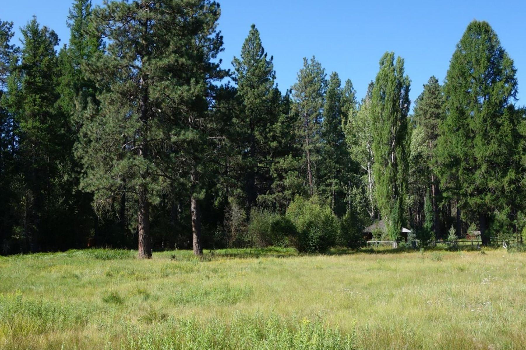 Land for Active at 26237 SW Tamarack Lane Camp Sherman, OR 97730 26237 SW Tamarack Lane Camp Sherman, Oregon 97730 United States