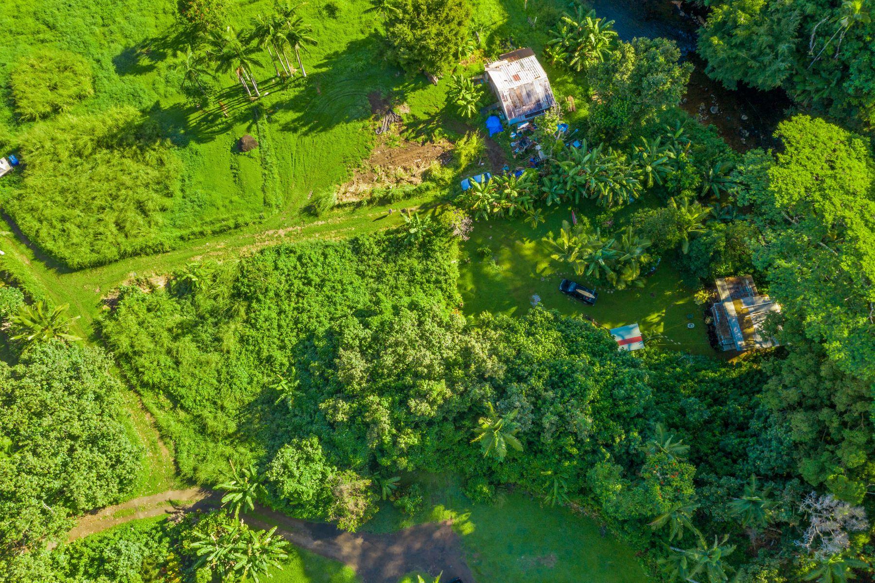 土地,用地 为 销售 在 ALAEKE RD Hanalei, HI 96722 ALAEKE RD 晗纳莱伊, 夏威夷 96722 美国