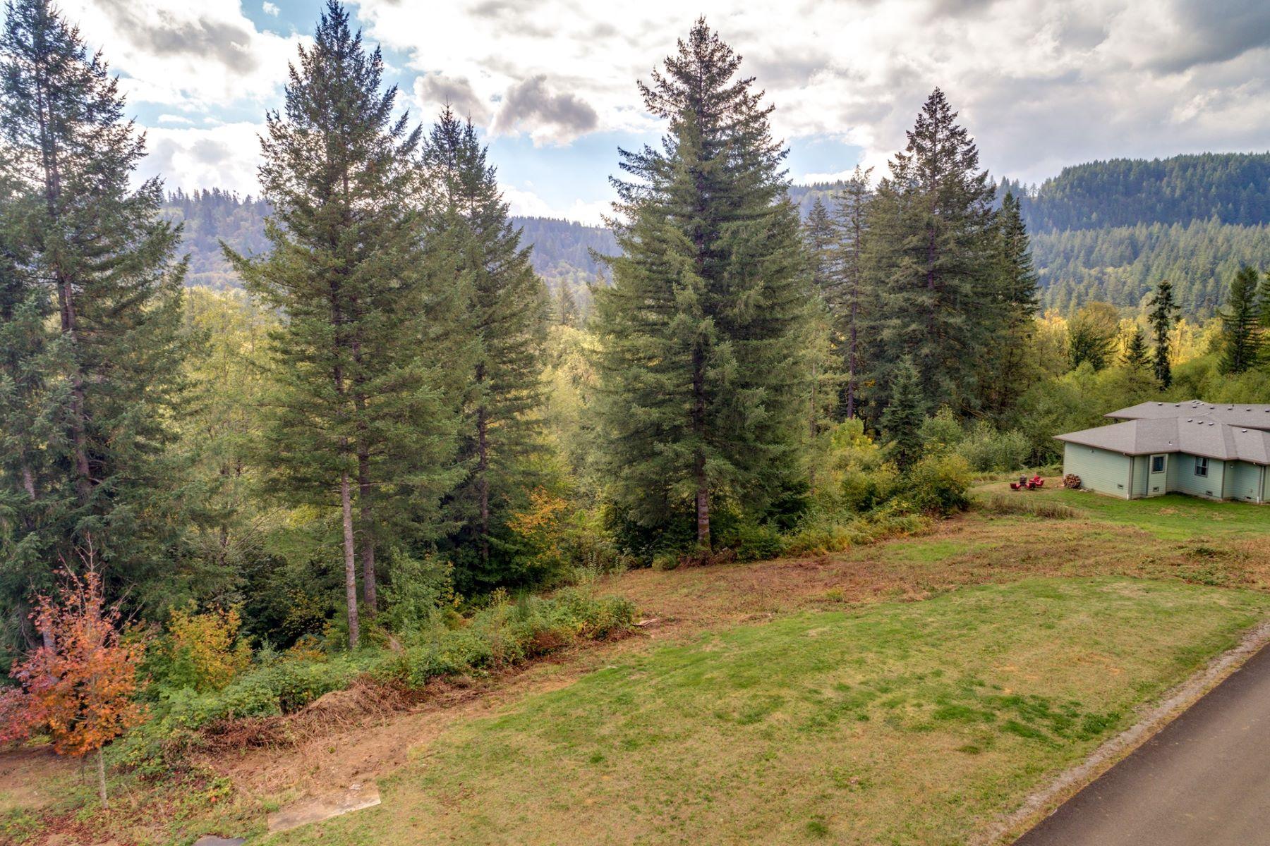 Land for Sale at 0 Thompson DR 5 Washougal, WA 98671 Washougal, Washington 98671 United States