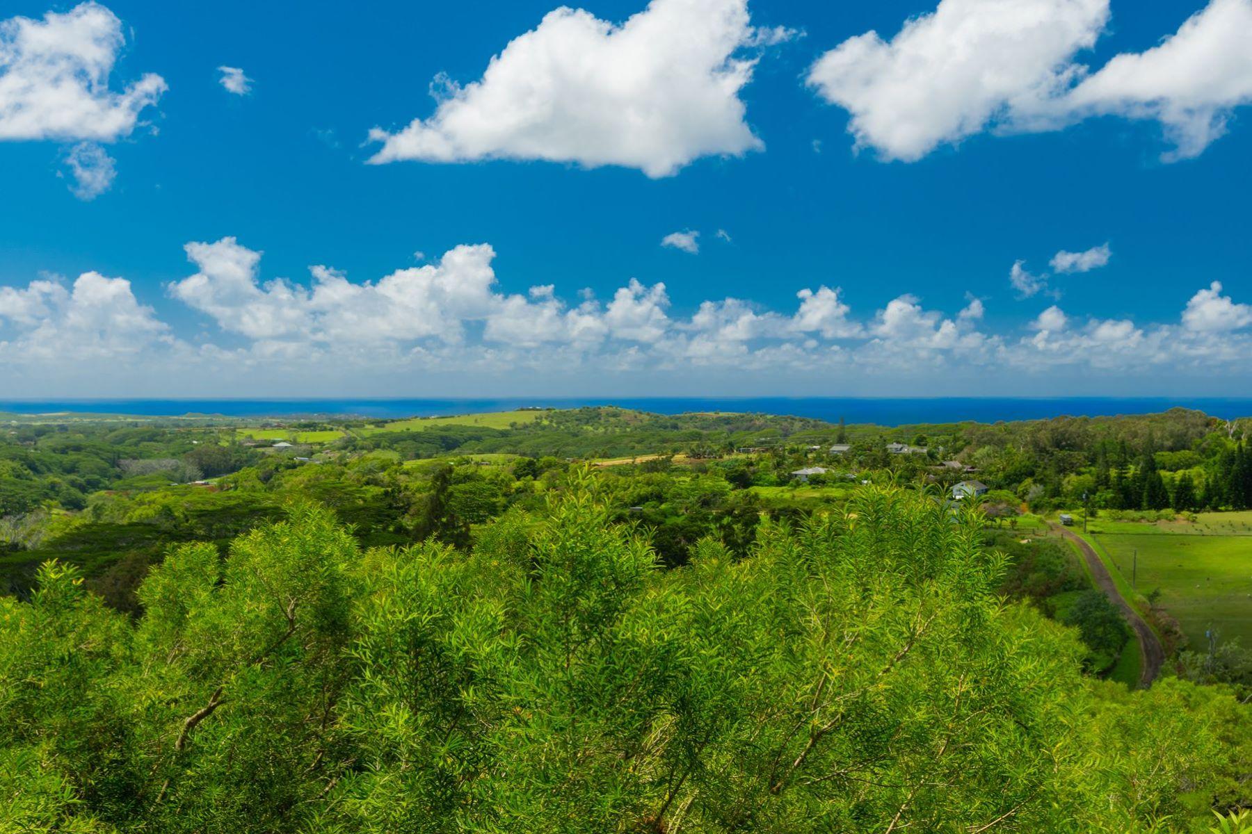 土地,用地 为 销售 在 4560-R UHA RD #3 LAWAI, HI 96765 4560-R UHA RD #3 Lawai, 夏威夷 96765 美国