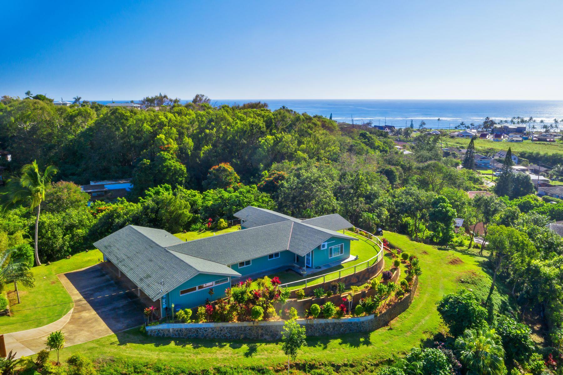 Multi-Family Homes 为 销售 在 4670 PELEHU RD KAPAA, HI 96746 4670 PELEHU RD 卡帕雅, 夏威夷 96746 美国