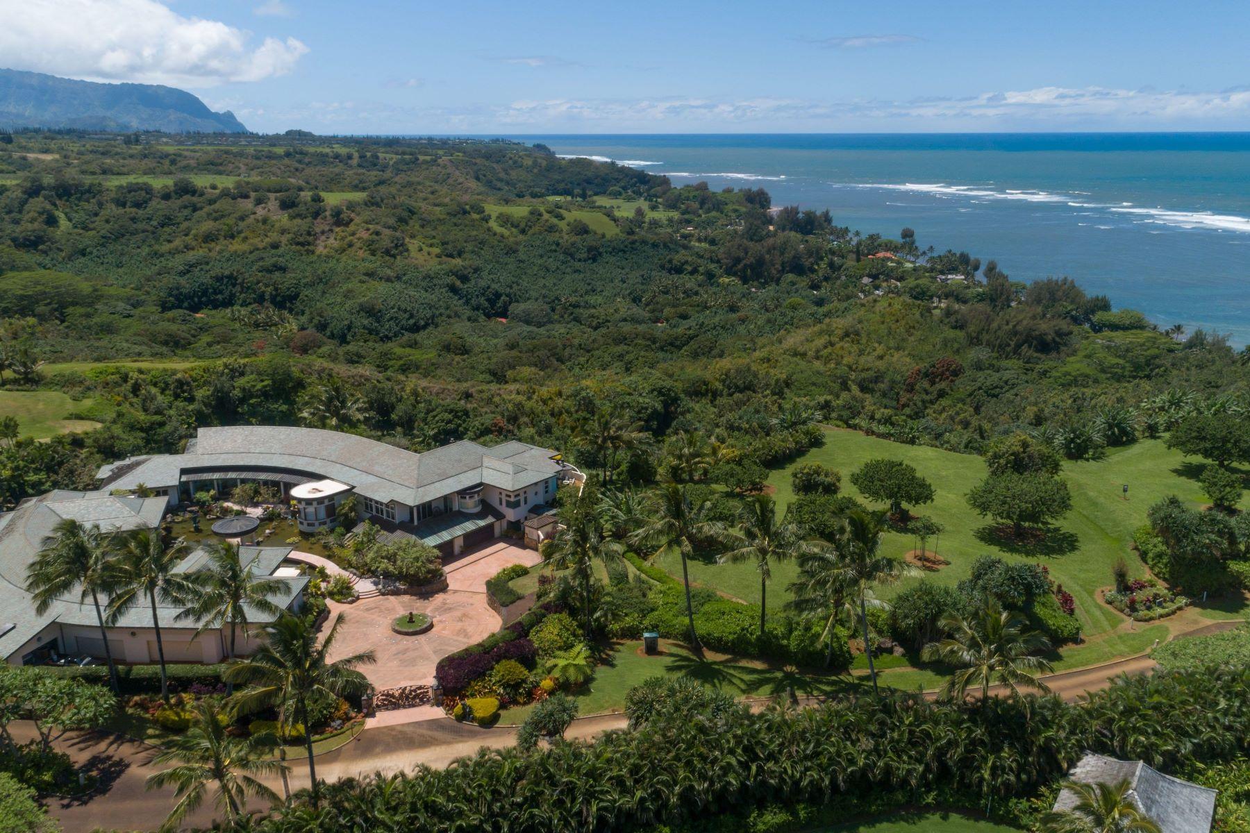 Single Family Homes para Venda às 4262-A ANINI VISTA DR #A KILAUEA, HI 96754 Kilauea, Havaí 96754 Estados Unidos