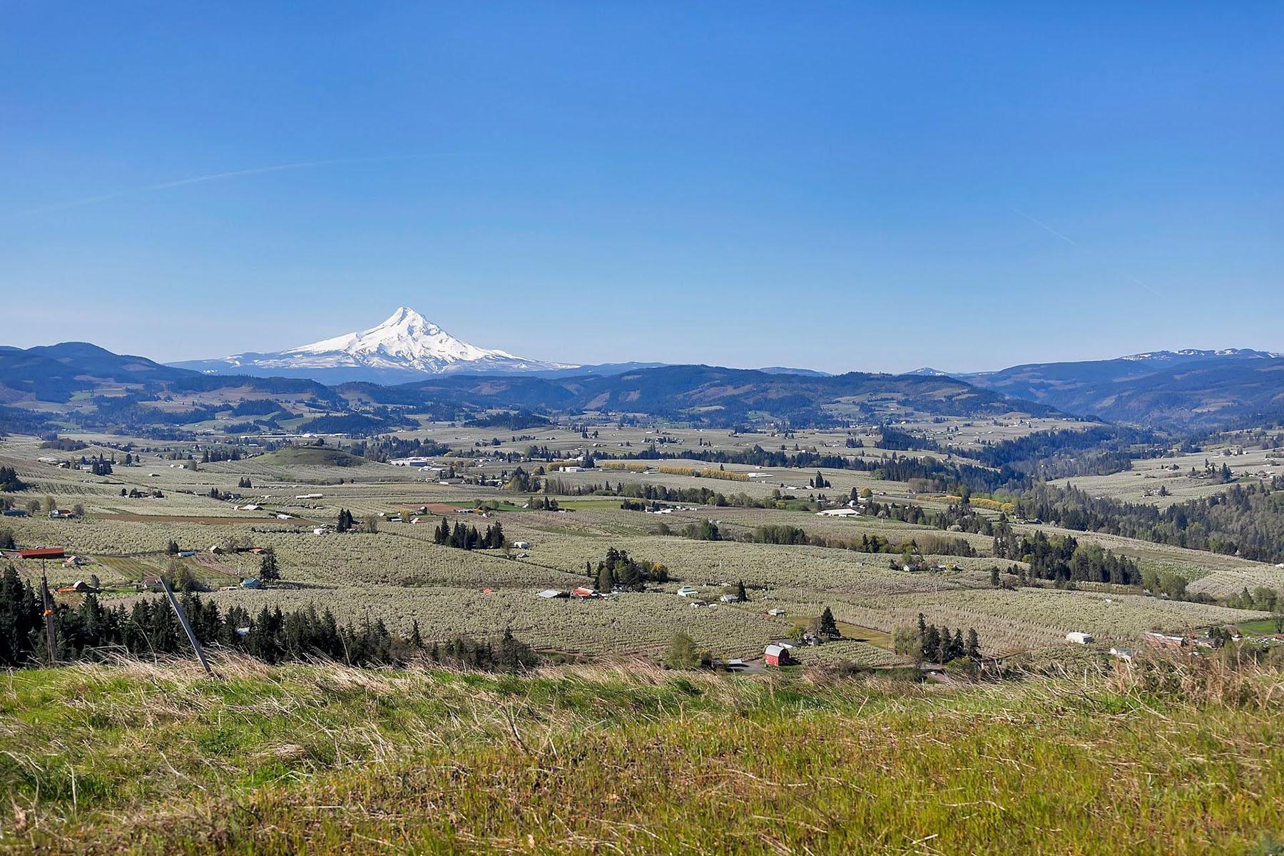Land for Active at 2333 Balsamroot DR 8 Hood River, OR 97031 2333 Balsamroot DR 8 Hood River, Oregon 97031 United States