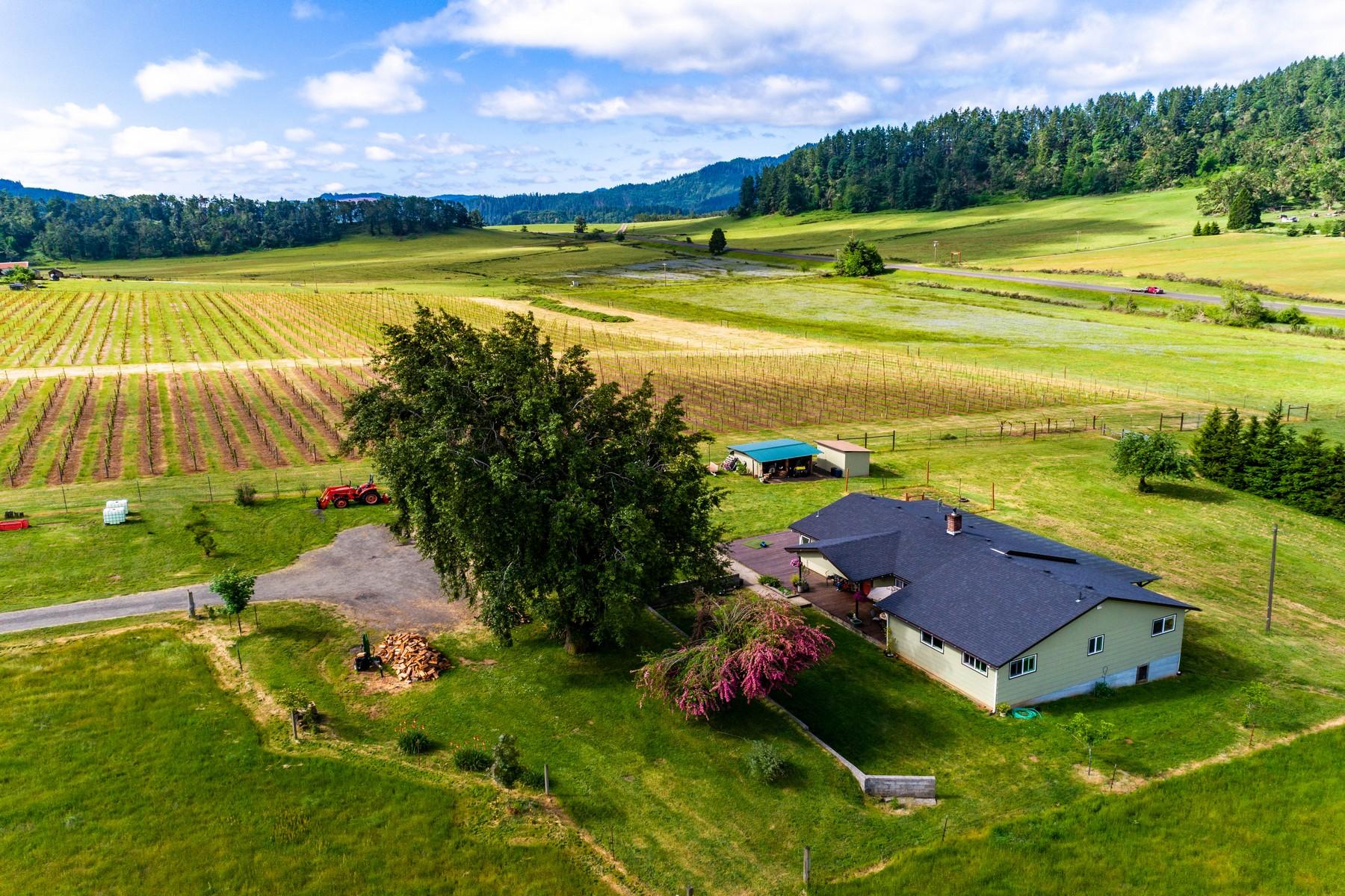 Farm / Ranch / Plantation for Active at 2471 Azalea Drive Elkton, OR 97436 2471 Azalea Drive Elkton, Oregon 97436 United States