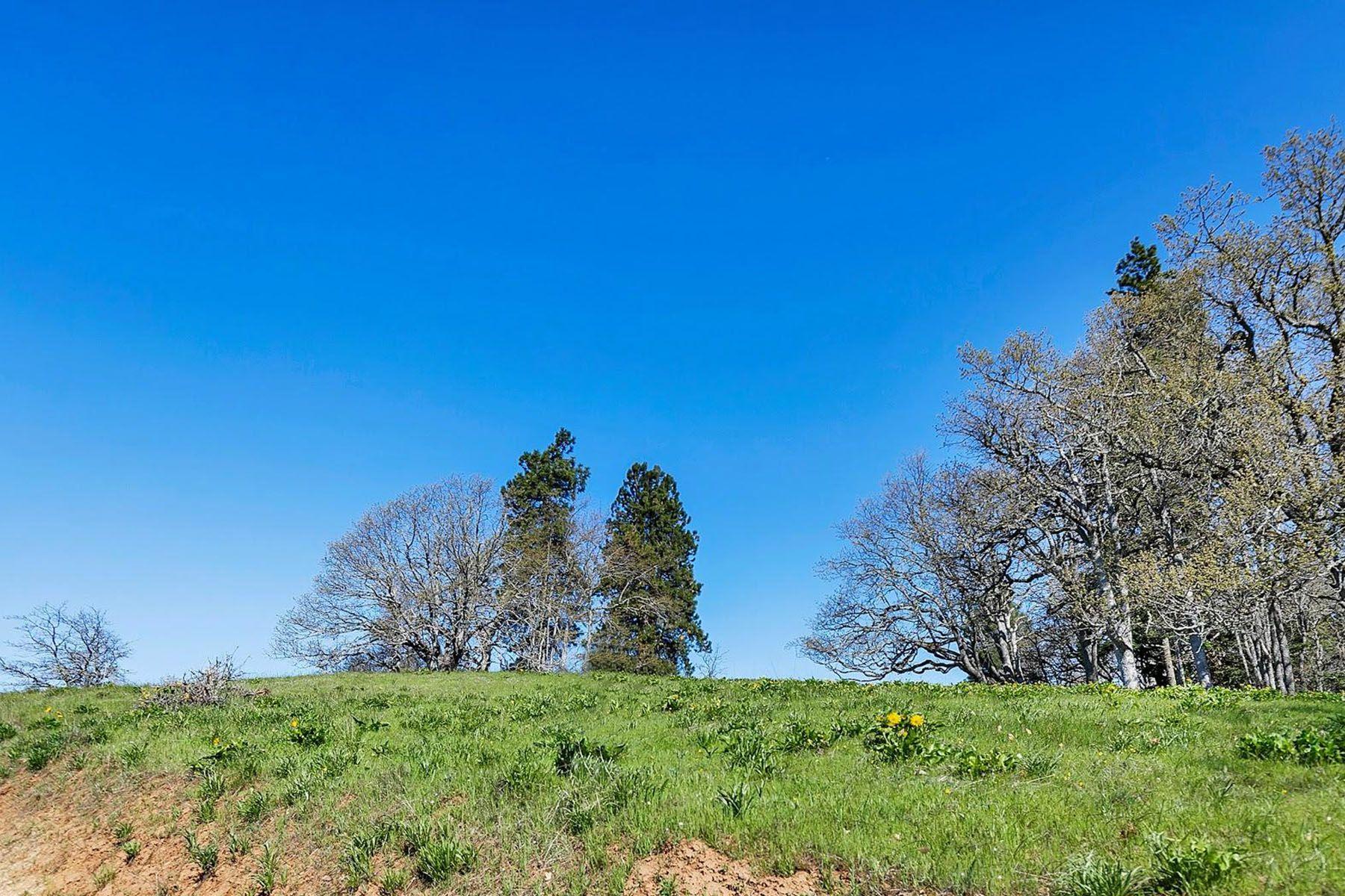 Land for Active at 1268 Hidden Oaks DR 10 Hood River, OR 97031 1268 Hidden Oaks DR 10 Hood River, Oregon 97031 United States