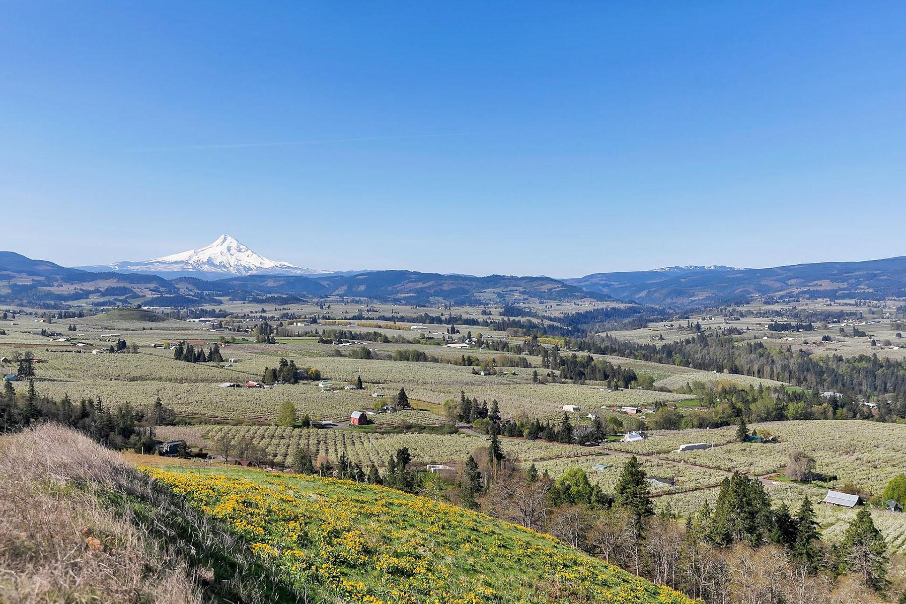Land for Active at 1319 Hidden Oaks DR 6 Hood River, OR 97031 1319 Hidden Oaks DR 6 Hood River, Oregon 97031 United States
