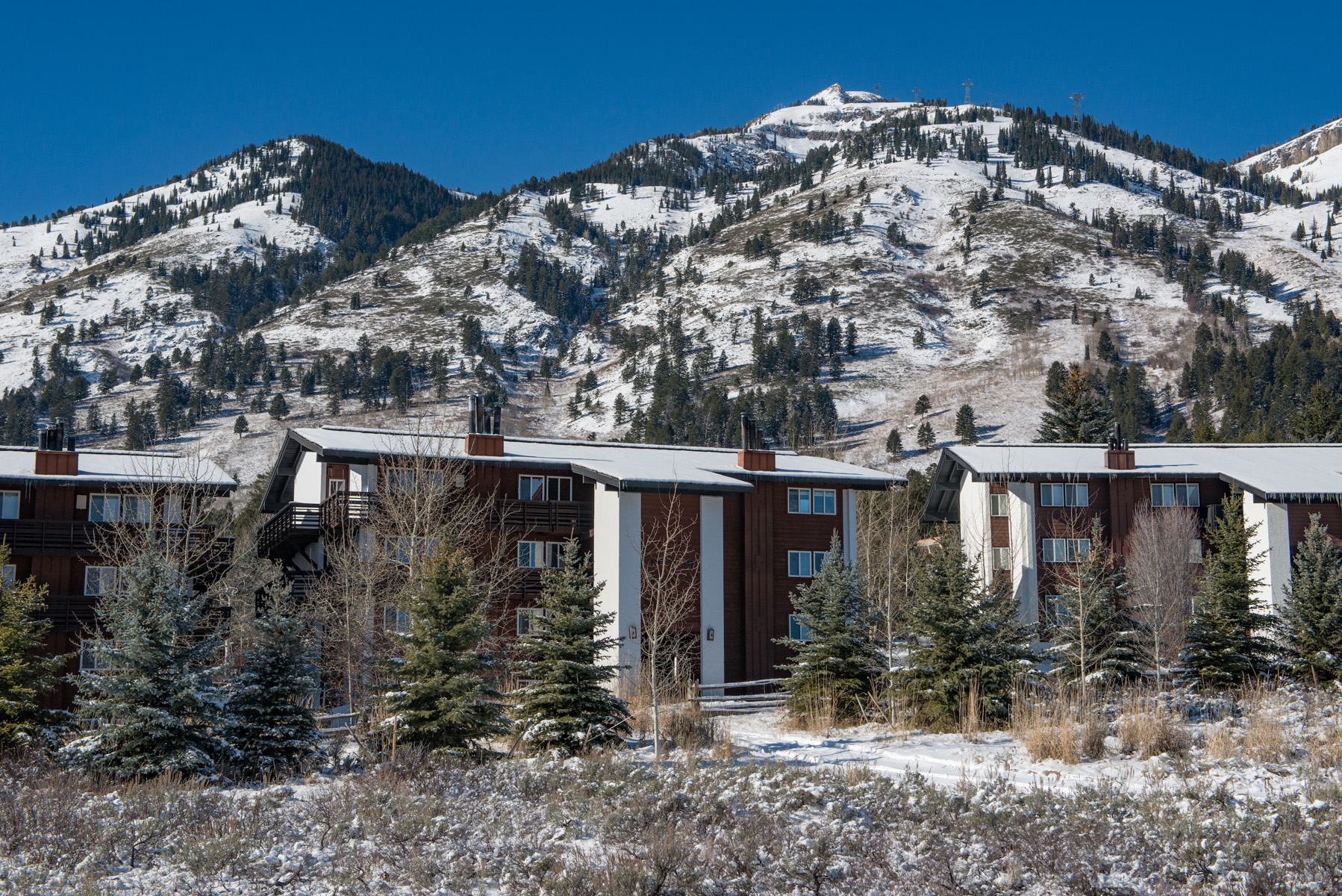 Property For Sale at Charming Teton Village Condo