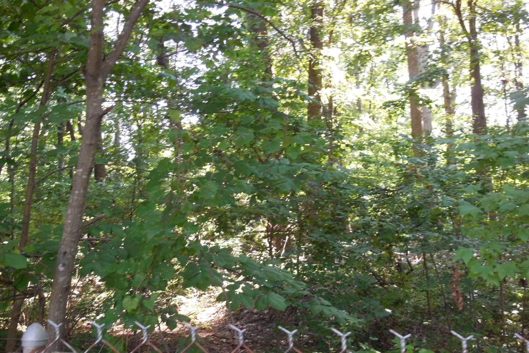 Terreno por un Venta en Residential Level Wooded Lot 3100 Reps Miller Road Norcross, Georgia, 30071 Estados Unidos
