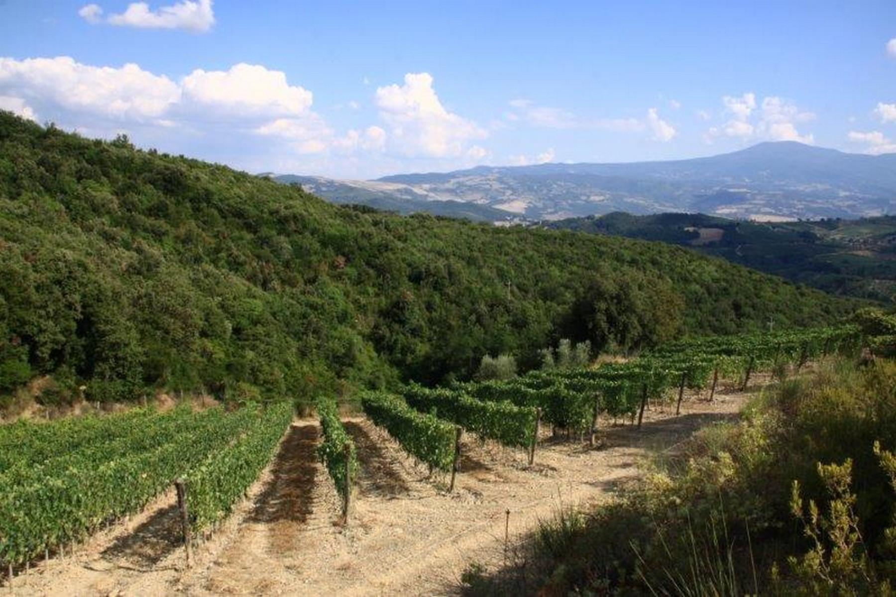 Casa Unifamiliar por un Venta en Prosperous winery in Montalcino Piazza del popolo Montalcino, Siena 53024 Italia