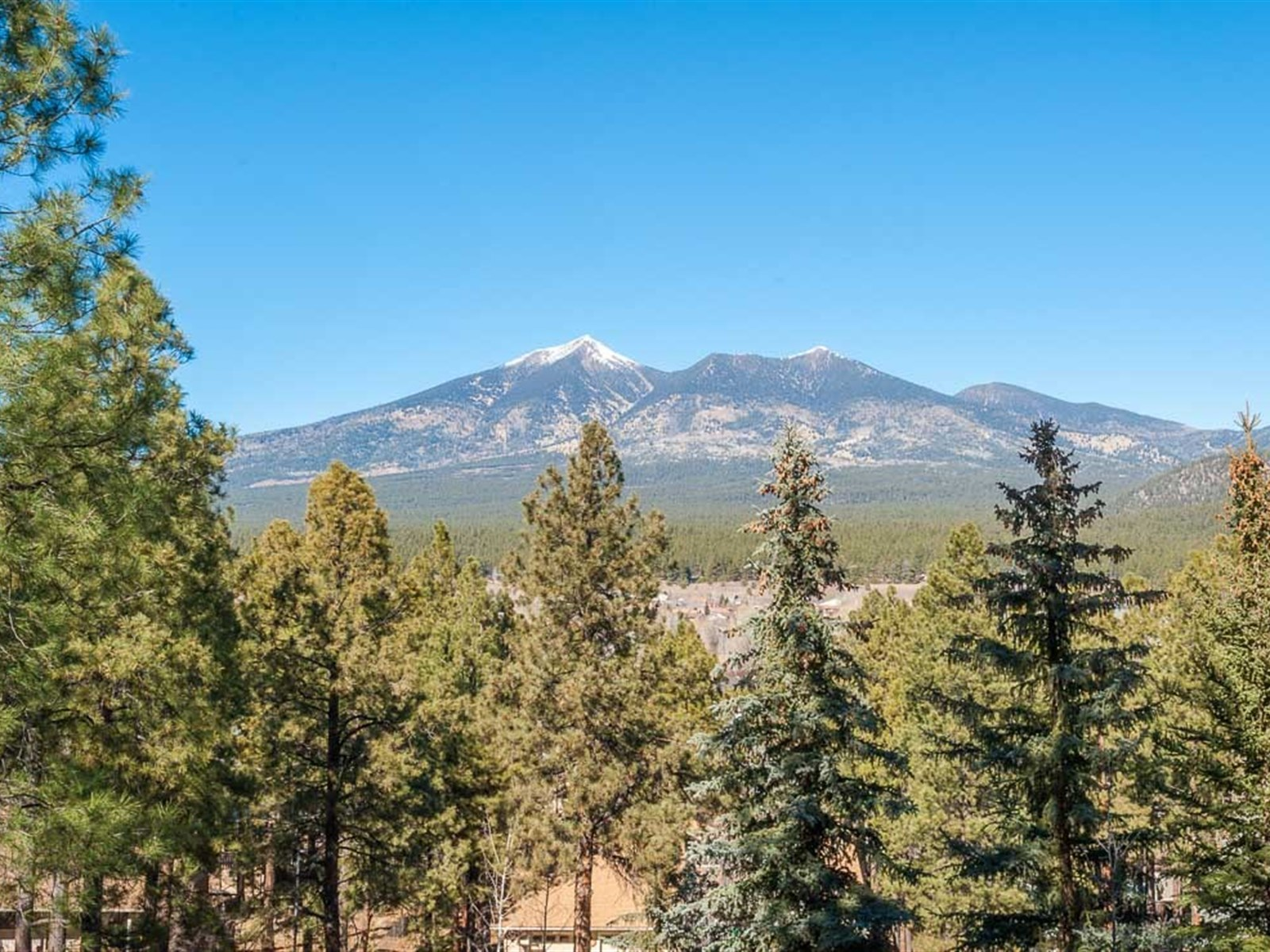Land for Sale at Privacy in the Pines Lot 25 Foothills WAY Flagstaff, Arizona 86001 United States