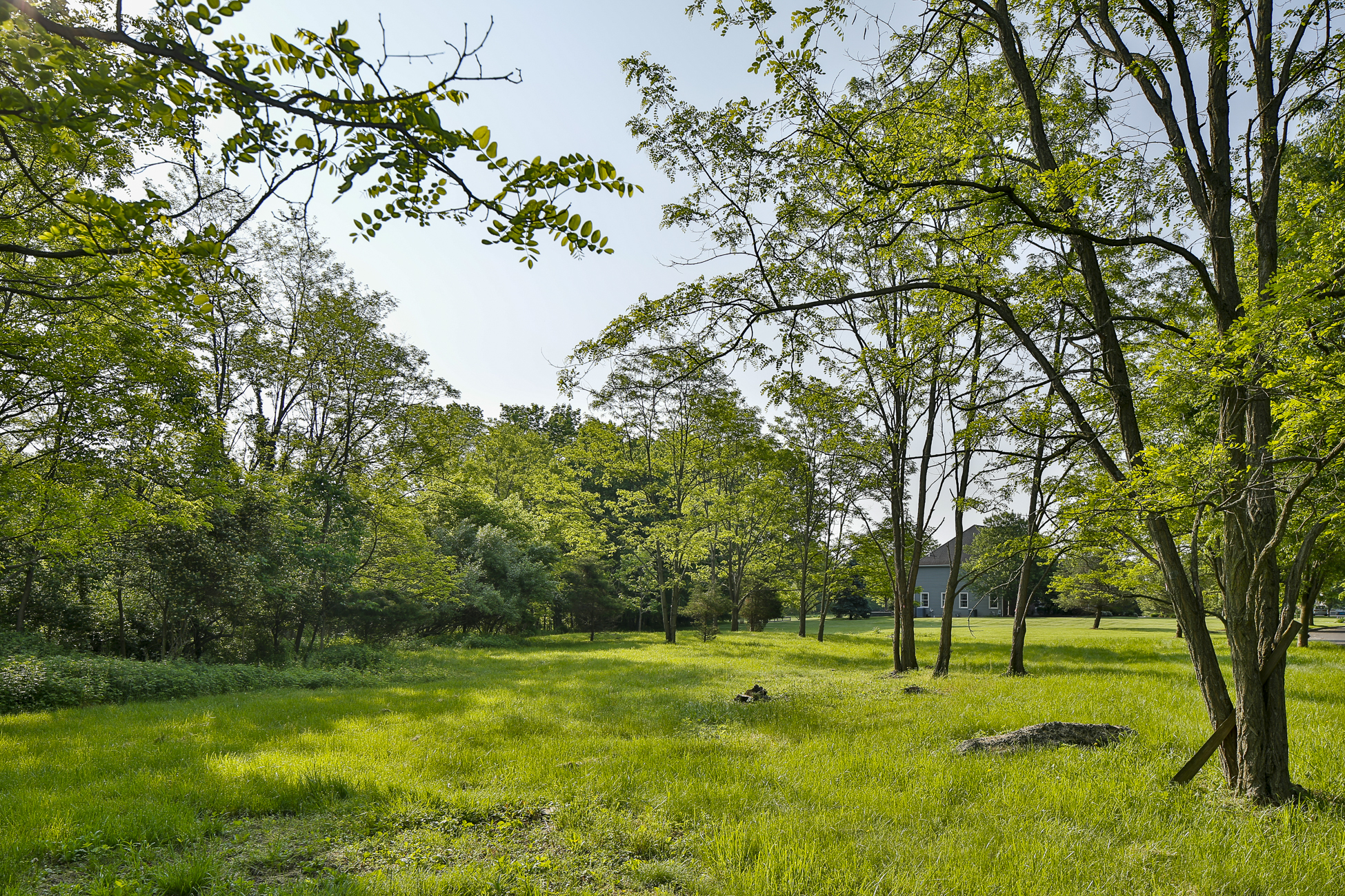 Additional photo for property listing at Ready to Build Lot in Lawrence Township 16 Buckingham Drive 普林斯顿, 新泽西州 08540 美国