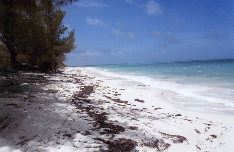 Additional photo for property listing at Bahama Palm Shores Lot 3, Block 5 Bahama Palm Shores, Abaco Bahamas