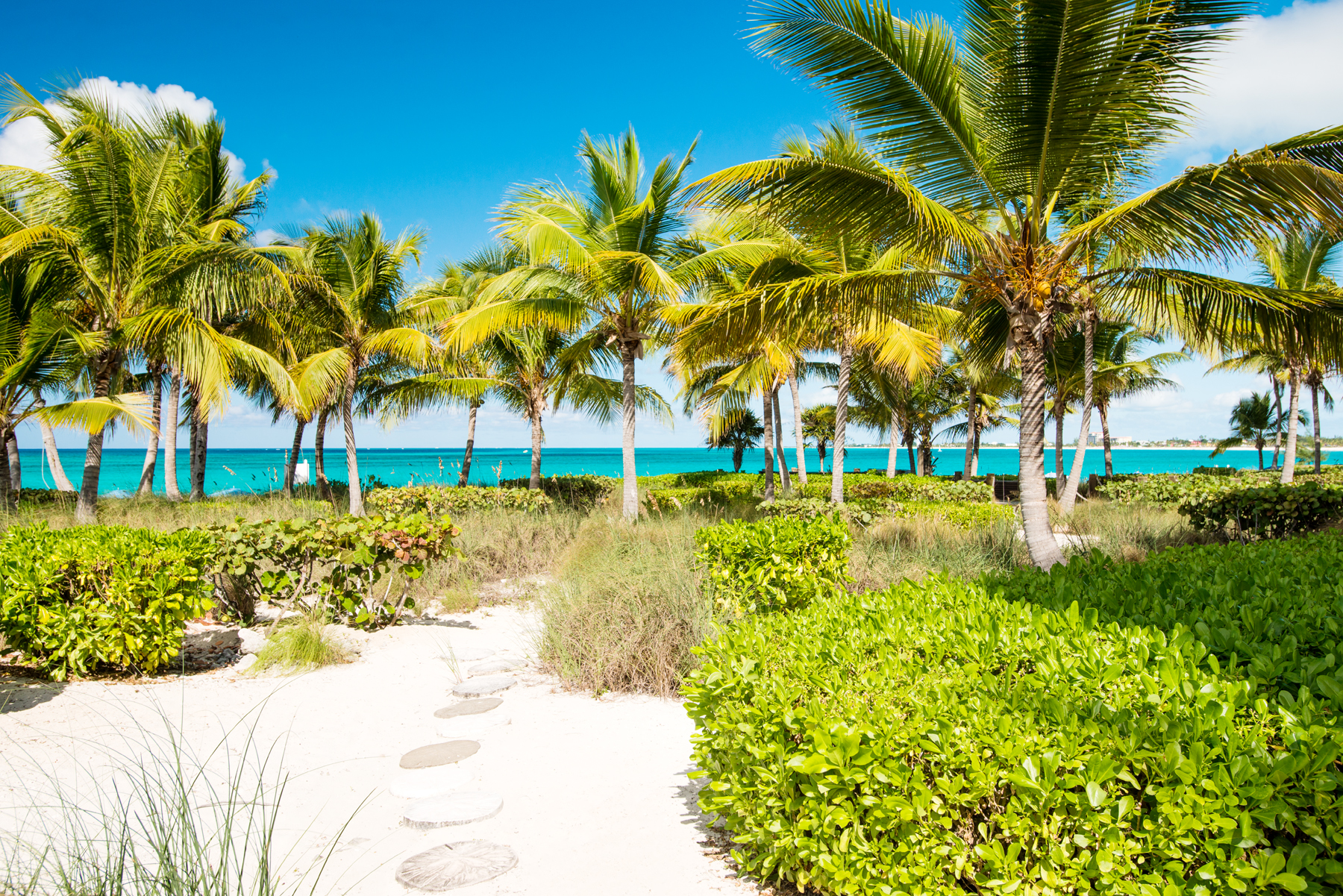 Additional photo for property listing at Villa Renaissance - Suite 101 Villa Renaissance, Grace Bay, Providenciales Islas Turcas Y Caicos