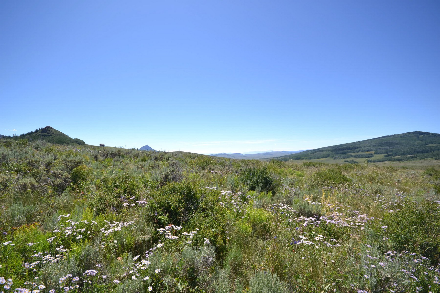 Land for Sale at Unbelievable Mountain Lot 123 CO 281 Lower Bear Mtn Rd. Steamboat Springs, Colorado 80487 United States