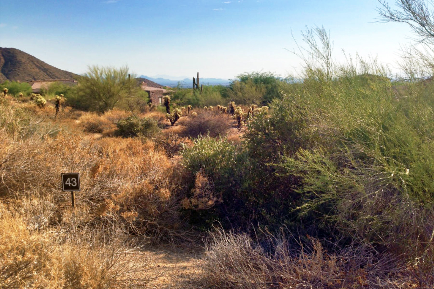 Land for Sale at Best Priced Homesite In Guard Gated Artesano In Troon Village 24820 N 107th Way #43 Scottsdale, Arizona, 85255 United States