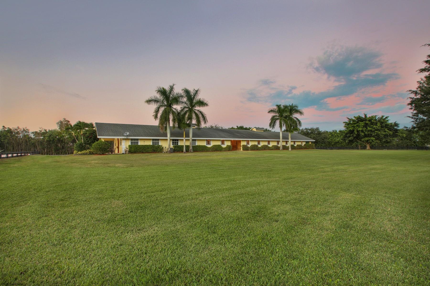 Granjas / Hacienda / Platanción por un Venta en Bordeaux Farm 14150 Palm Beach Point Blvd Wellington, Florida 33414 Estados Unidos