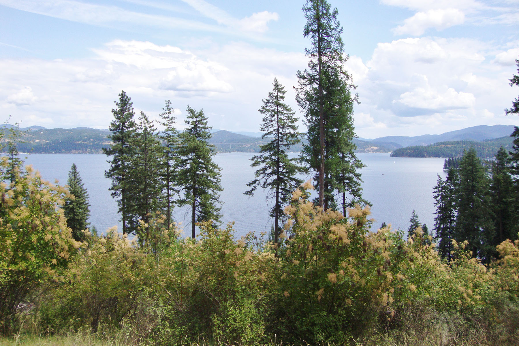 Property For Sale at Steven's Point Lake CDA View Lot
