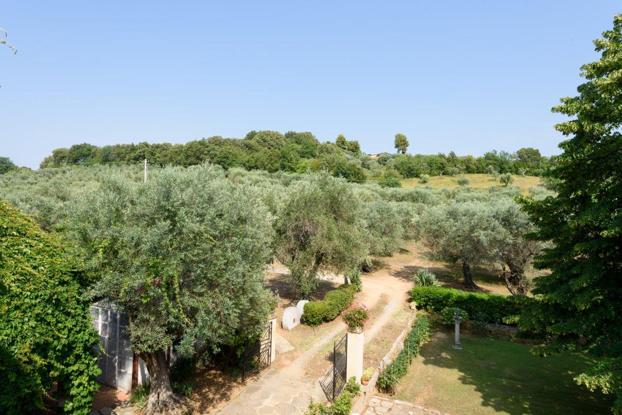 Additional photo for property listing at Refined monoir on a hill with views of the sea Strada provinciale del Passo di Bocca di Valle Castagneto Carducci, Livorno 57022 Italy