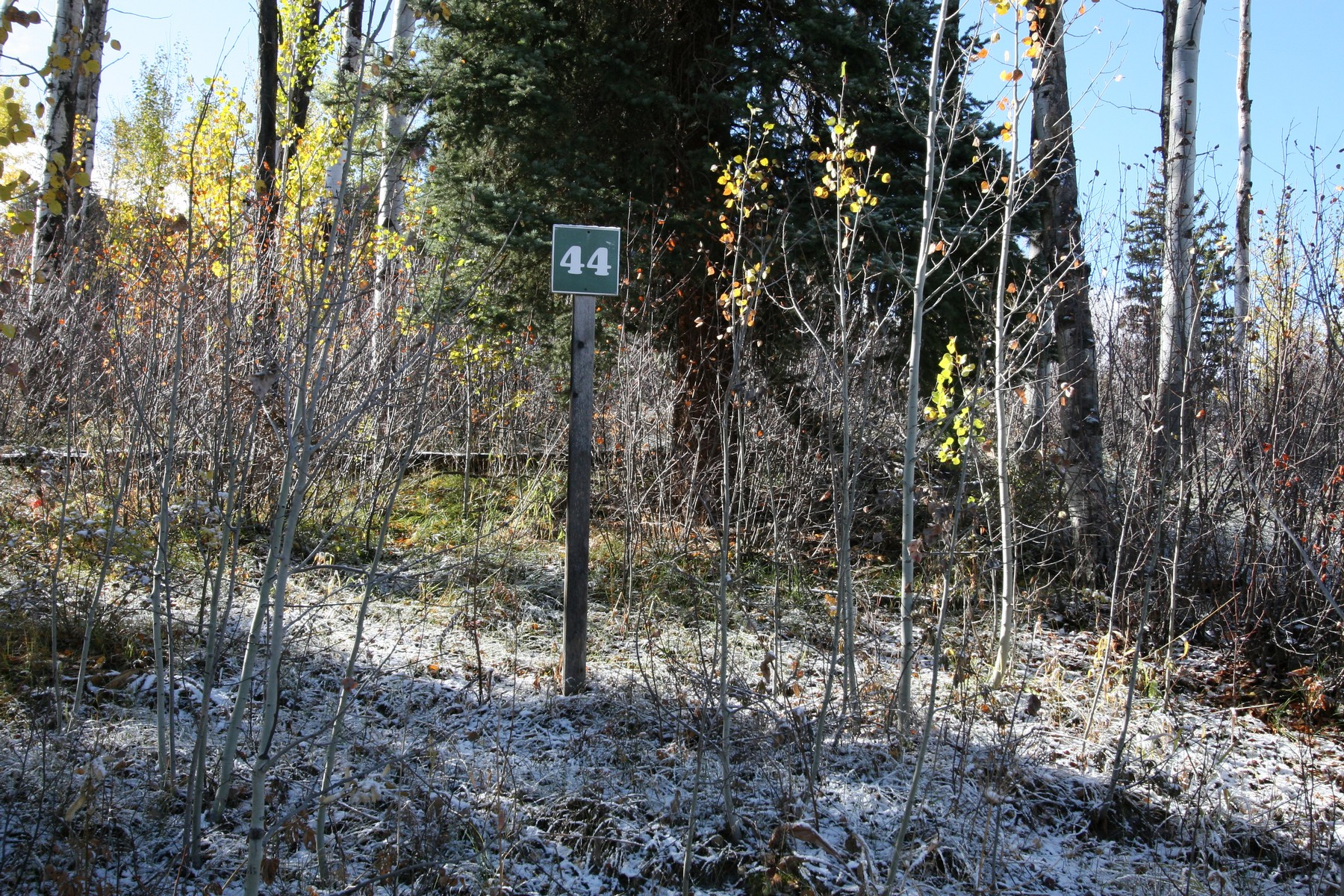 Land for Sale at Pines Lot 44 461 Pine Crest Drive Snowmass Village, Colorado, 81615 United States