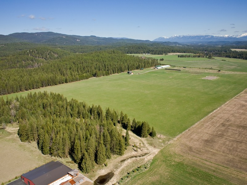 Property For Sale at 20 Acres Minutes from Whitefish