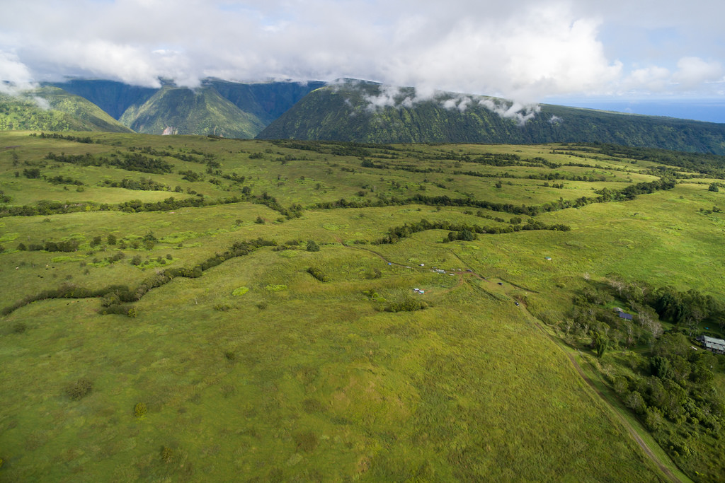 土地 为 销售 在 near the Rim of Waipio Valley 47-5341 W. Waikoekoe Lane Honokaa, 夏威夷 96727 美国