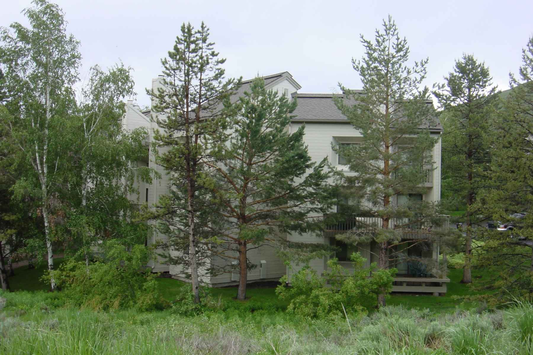 Condominio por un Venta en Indian Springs 2380 Indian Springs Elkhorn, Sun Valley, Idaho, 83353 Estados Unidos