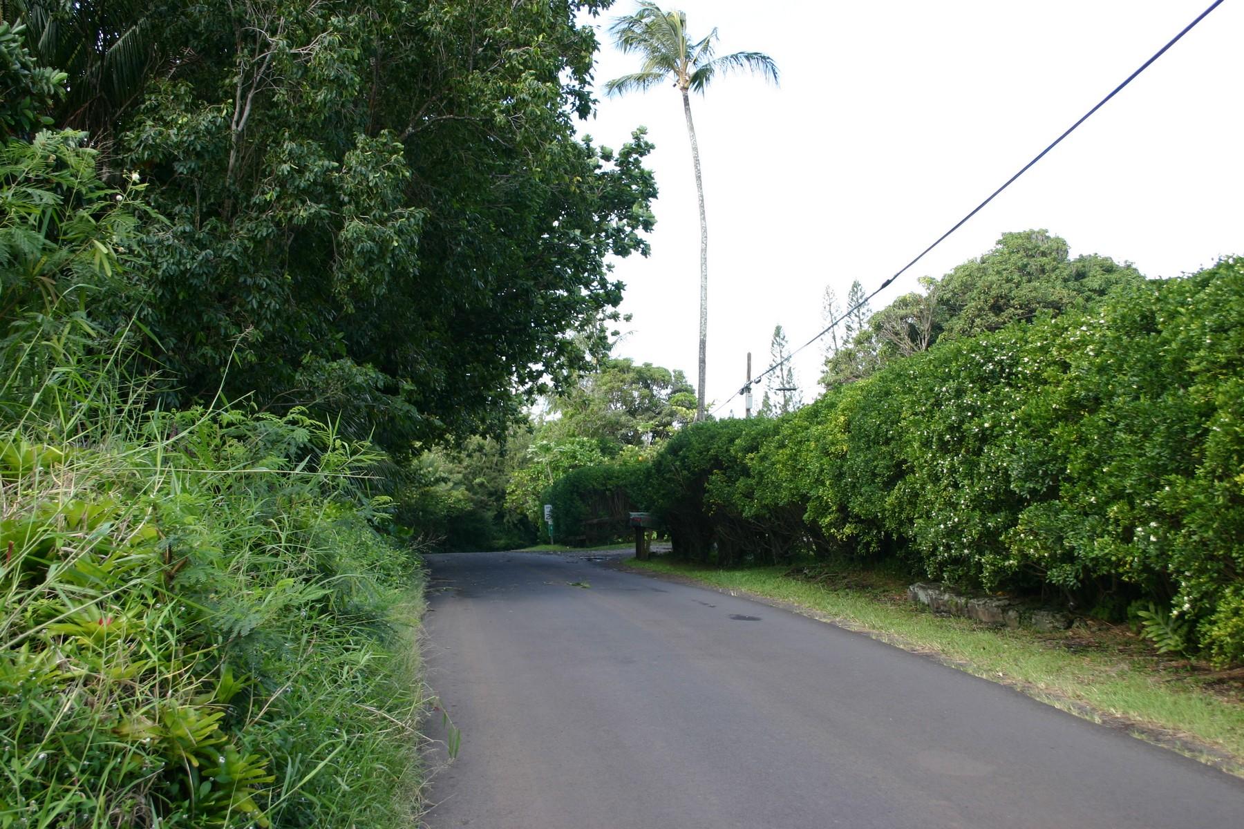 Land for Sale at Kipahulu 2 Acre Lot, Hana, Maui 0 Hana Highway Hana, Hawaii 96713 United States
