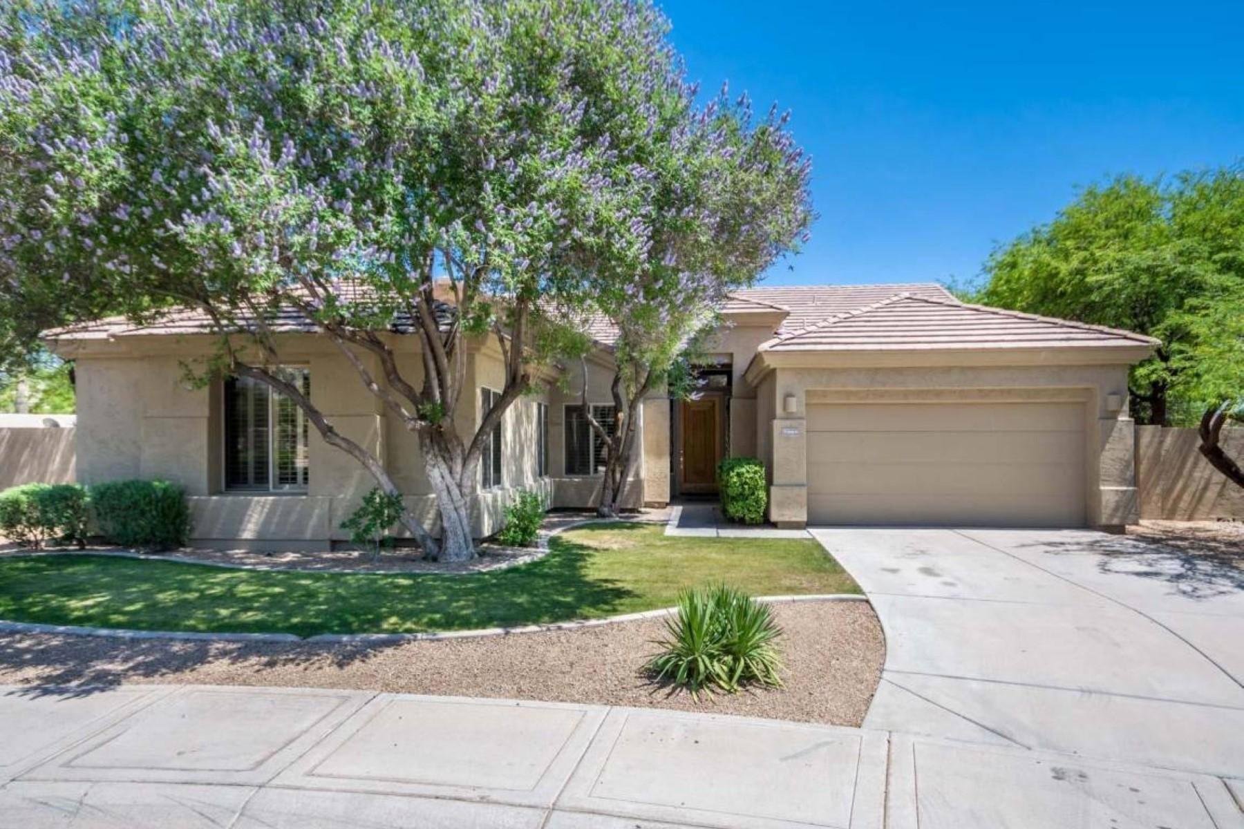 一戸建て のために 売買 アット Fantastic four bedroom Grayhawk home 7353 E Tailfeather Drive Scottsdale, アリゾナ, 85255 アメリカ合衆国
