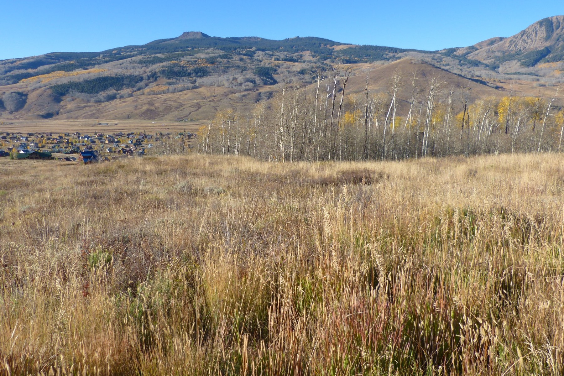Land for Sale at Grand Views 252 Neville Way Crested Butte, Colorado 81224 United States