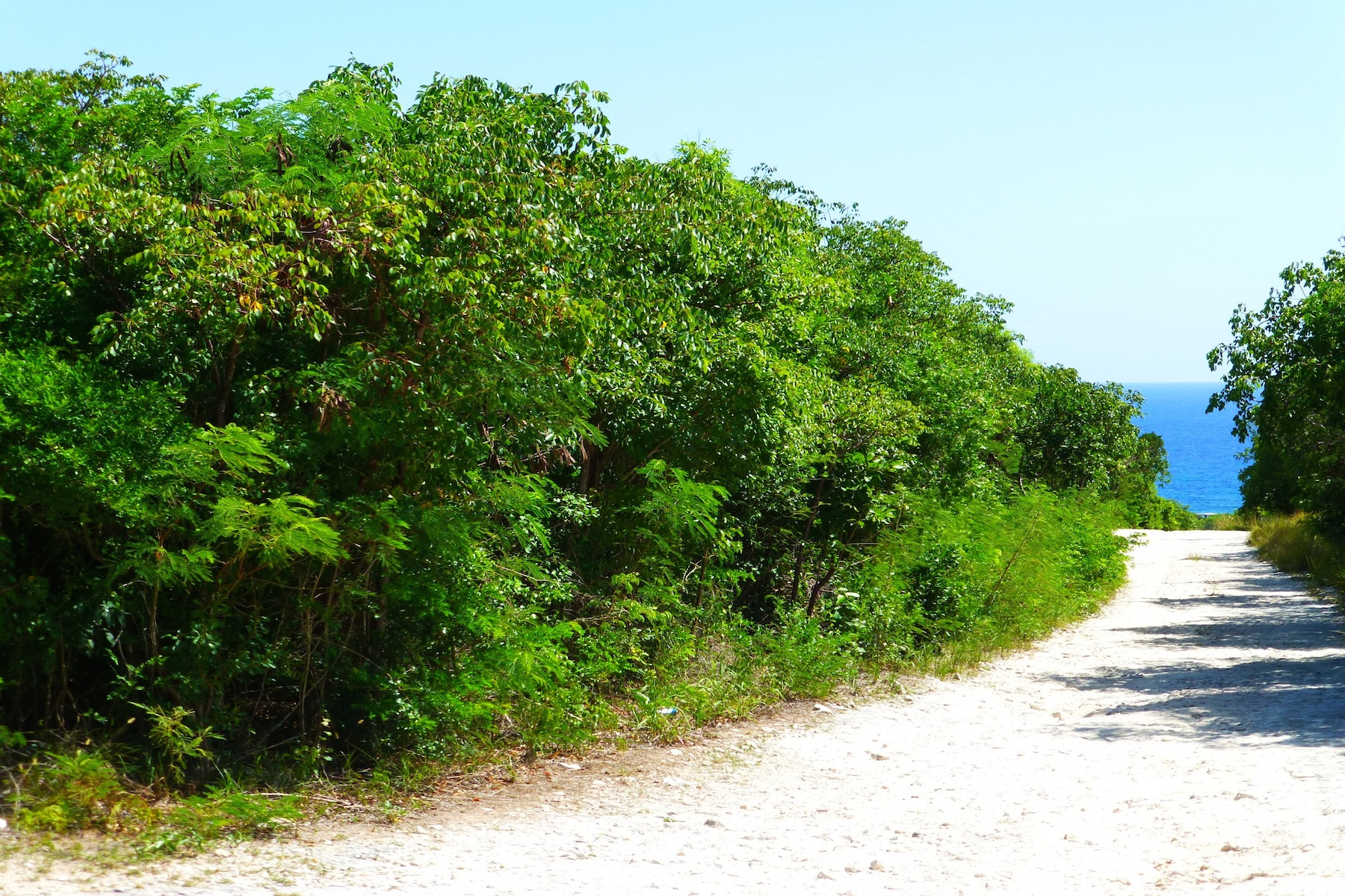 Land for Sale at EIS Lot 1 Gregory Town, Eleuthera Bahamas