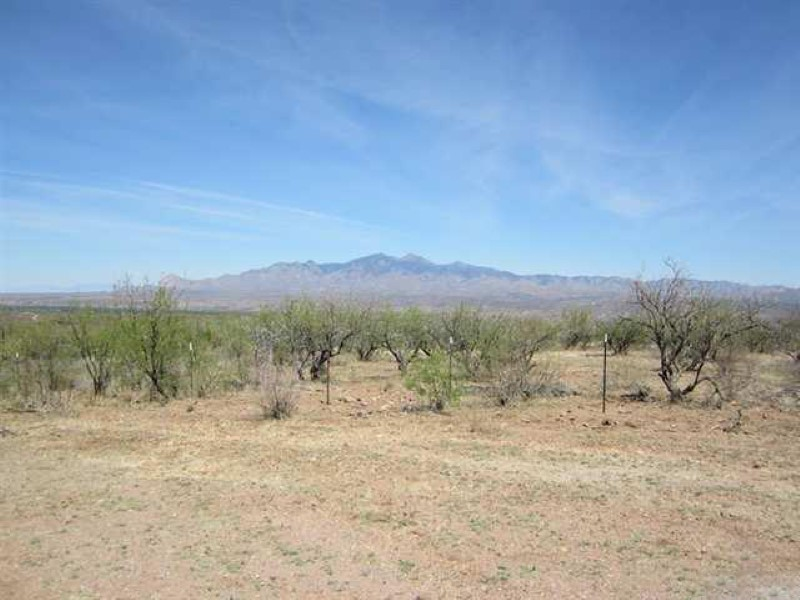 sales property at Elevated Four Acre Lot