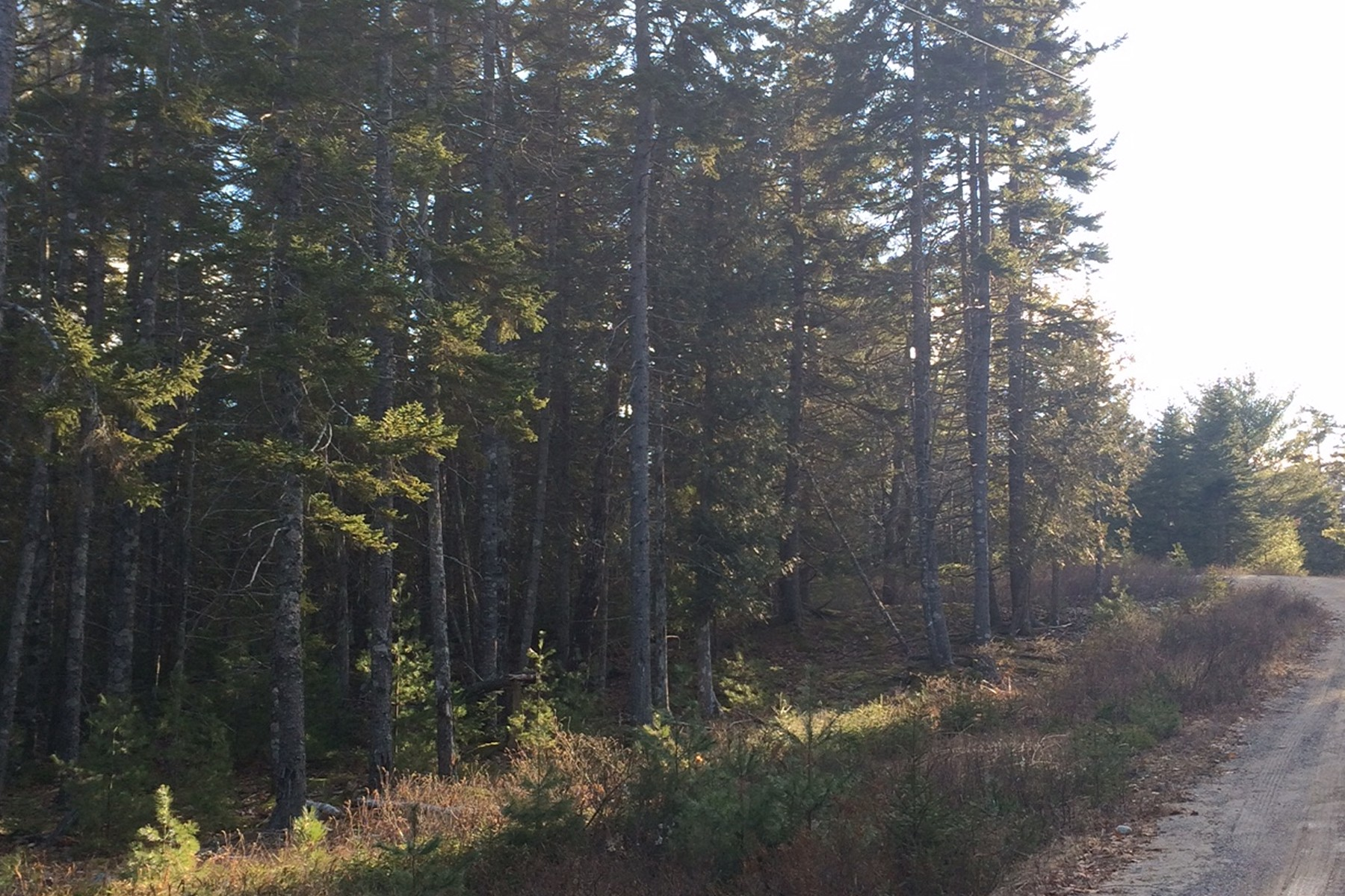 Land for Sale at Woods Road Lot 4, Woods Road Mount Desert, Maine, 04660 United States