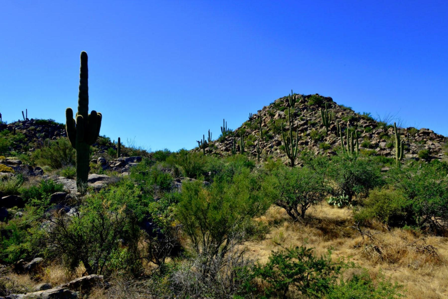Terreno por un Venta en Private Homesite With Dramatic Rock Outcroppings, Saguaros & Mountain Views 953 W Granite Gorge Drive W #321 Oro Valley, Arizona 85755 Estados Unidos
